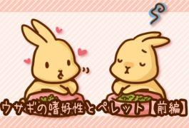 ウサギとペレット